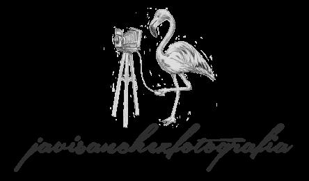 Javi Sanchez logo